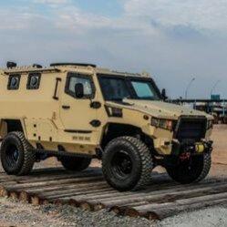 terrier-lt-79